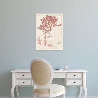 Easy Art Prints Vision Studio's 'Antique Coral Seaweed II' Premium Canvas Art