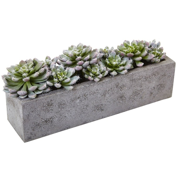 "Nearly Natural Home Decor 5.5"" Succulent Garden with Textured Concrete Planter"