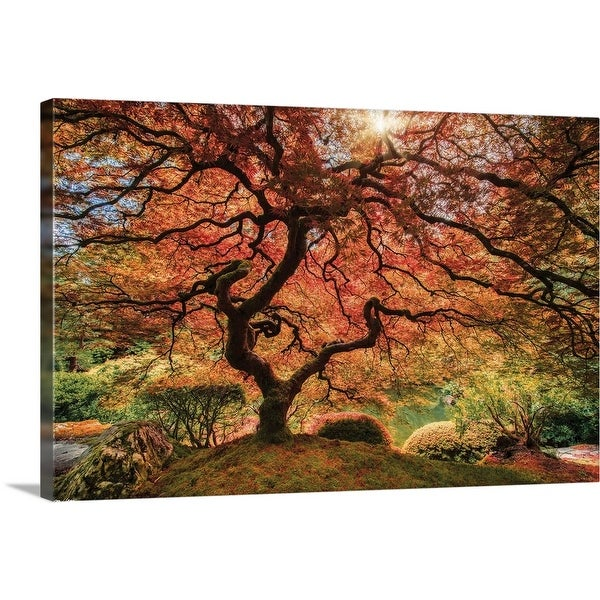 """First Colors of Fall I"" Canvas Wall Art"