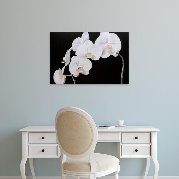 Easy Art Prints Sandra Iafrate's 'Dramatic Orchids I' Premium Canvas Art