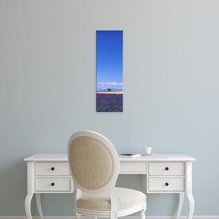 Easy Art Prints Panoramic Images's 'Lavender Field Provence France' Premium Canvas Art