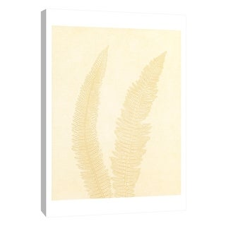 """PTM Images 9-105222  PTM Canvas Collection 10"""" x 8"""" - """"Gray Fern 7"""" Giclee Ferns Art Print on Canvas"""