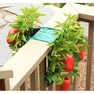 Healthy Pepper Garden with Vertical Growing Bag - Grow Bell or Jalapeno Peppers