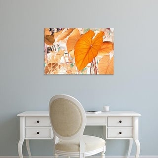 Easy Art Prints Judy Stalus's 'Elephant Ears' Premium Canvas Art