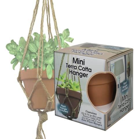 Mini Terra Cotta Pot & Jute Plant Hanger Set-