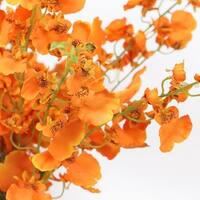 """G Home Collection Luxury Silk Dancing Lady Orchid Stem in Orange 38"""" Tall"""