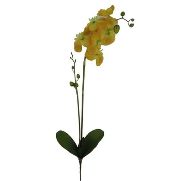 Admired by Nature GPL951-BUTTER Artificial Orchid Phalaenopsis Spray Butter - 3 x 31 in.