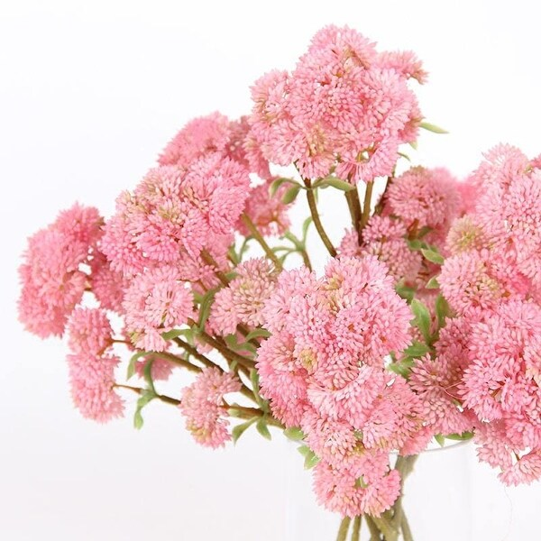 "FloralGoods Artificial Irish Cauliflower Stem in Pink 13"" Tall"