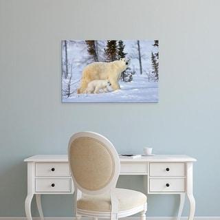 Easy Art Prints Keren Su's 'Mother Polar Bear With Cub On The Tundra' Premium Canvas Art