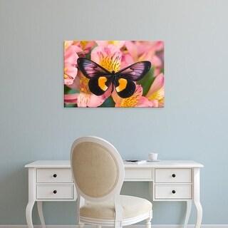 Easy Art Prints Darrell Gulin's 'Unknown' Premium Canvas Art