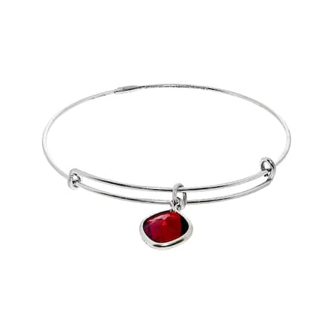 "Alex And Ani Women's Color Therapy Bangle Bracelet - 7"" - Silver"
