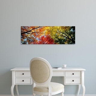 Easy Art Prints Panoramic Images's 'Low angle view of trees' Premium Canvas Art