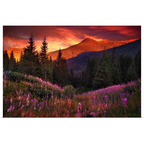 """""""Mountain flowers in pine forest"""" Poster Print"""