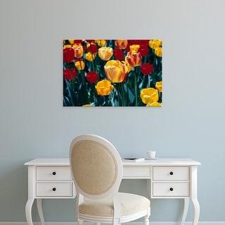 Easy Art Prints Michael DeFreitas's 'Tulips' Premium Canvas Art
