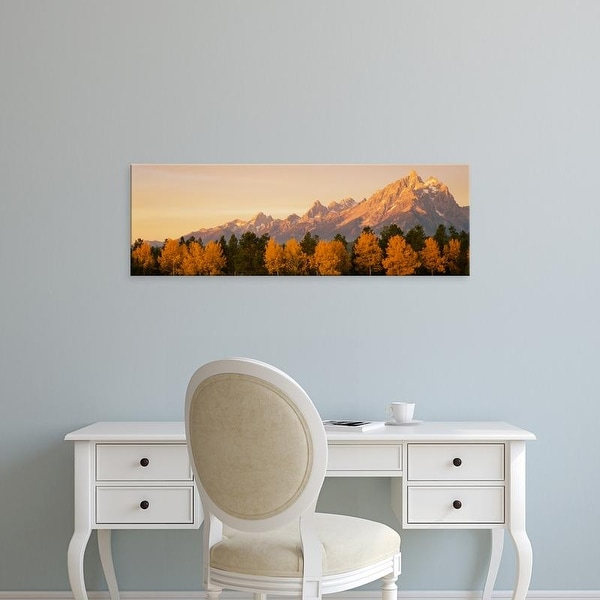 Easy Art Prints Panoramic Image 'Aspen trees, Mountainside, Teton Range, Grand Teton Park, Wyoming' Canvas Art