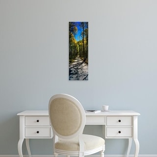 Easy Art Prints Panoramic Images's 'Aspen trees in a forest, Californian Sierra Nevada, California, USA' Canvas Art