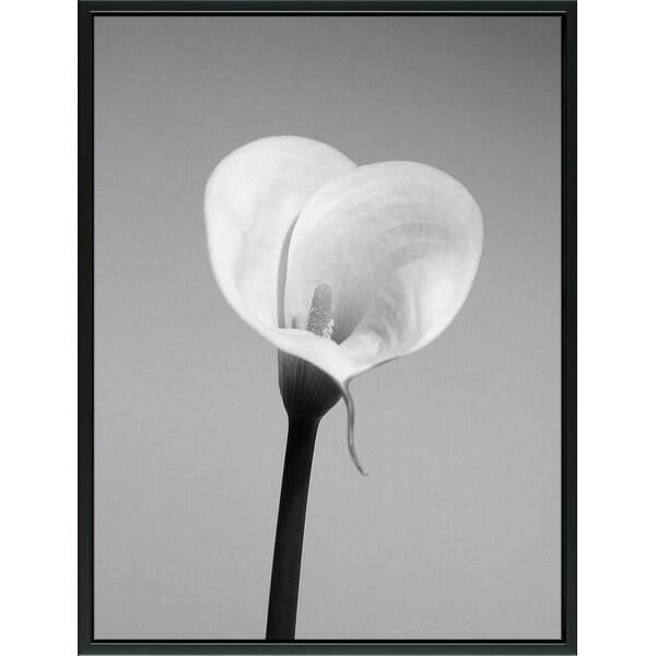 Easy Art Prints PhotoINC Studio's 'Calla No. 2' Premium Canvas Art