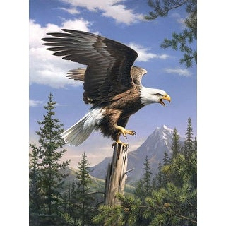 """Paint By Number Kit Artist's Collection 9""""X12""""-Screaming Eagle"""
