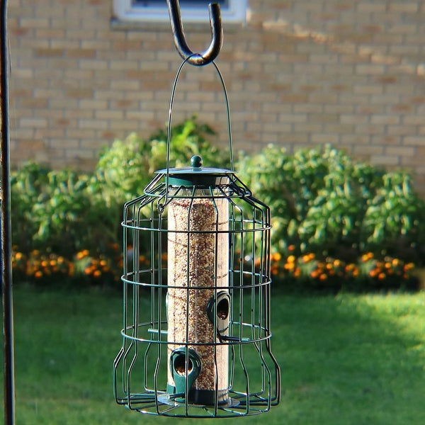 Sunnydaze 10-Inch Green 4-Peg Outdoor Wild Bird Feeder with Steel Surround