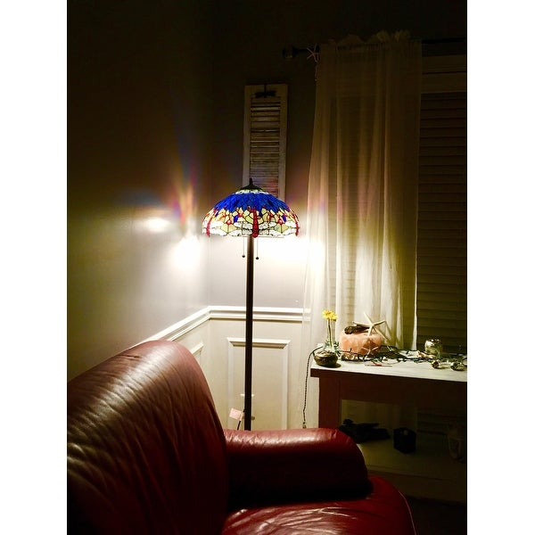 Tiffany-style Dragonfly Floor Lamp - Free Shipping Today - Overstock ...