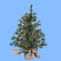 2' Pre-Lit Silver Pine Artificial Christmas Tree in Burlap Bag - Clear Lights - green