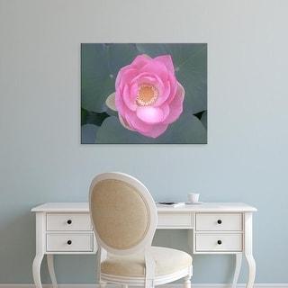 Easy Art Prints Jim Christensen's 'Blushing Lotus I' Premium Canvas Art
