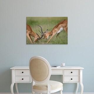 Easy Art Prints Paul Souders's 'Chobe National Park Impala' Premium Canvas Art