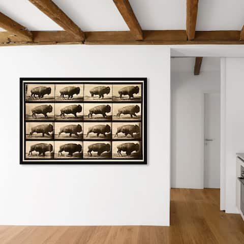 Oliver Gal 'Buffalo In Motion' Animals Wall Art Framed Print Zoo and Wild Animals - Brown, Brown