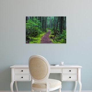 Easy Art Prints Chuck Haney's 'Hiking Trail Winds Through Mossy Rainforest In Glacier National Park' Canvas Art