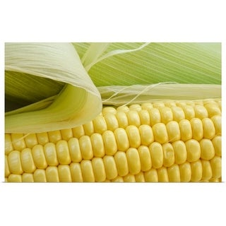 """Close up of corn"" Poster Print"