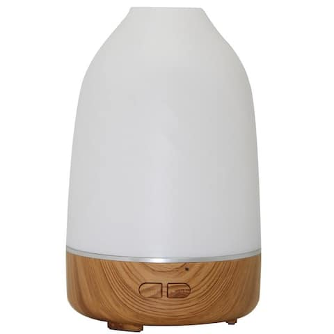 Lauren Taylor- Bamboo Color Changing Diffuser - 9x9x14.7