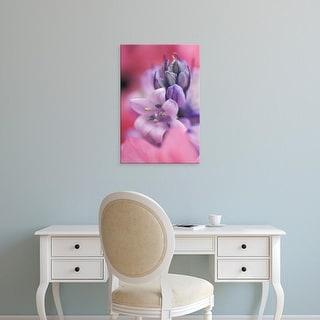 Easy Art Prints Jaynes Gallery's 'Hyacinth Close