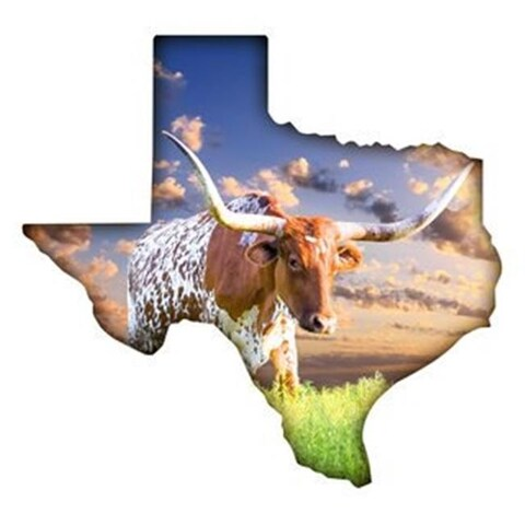 Next Innovations 101410034-LONGHORN Texas Longhorn Metal Wall Art