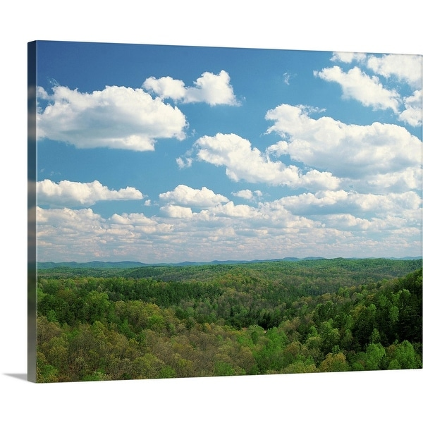 """Daniel Boone National Forest, Cumberland State Park, Kentucky"" Canvas Wall Art"