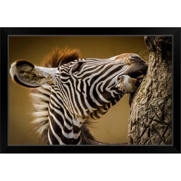 """""""Zebra"""" Black Framed Print"""