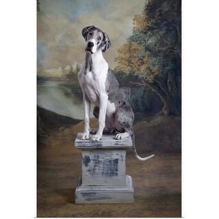 """Great Dane sitting on pedestal"" Poster Print"