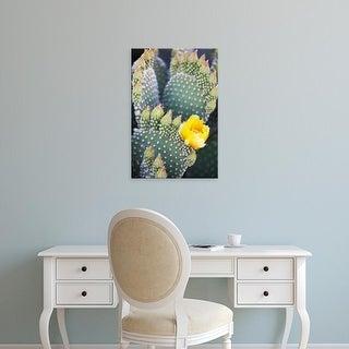 Easy Art Prints Jamie & Judy Wild's 'Bunny Ears Cactus' Premium Canvas Art