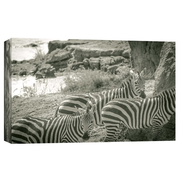 """PTM Images 9-102270 PTM Canvas Collection 8"""" x 10"""" - """"Watering Hole"""" Giclee Zebras Art Print on Canvas"""