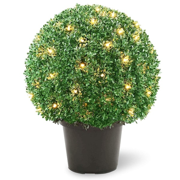 """1.83' x 18"""" Pre-Lit Artificial Boxwood Ball Shaped Topiary Tree - Clear Lights - N/A"""