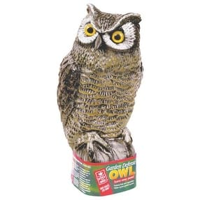 Easy Gardener 8001 Garden Defense Owl Scarecrow|https://ak1.ostkcdn.com/images/products/is/images/direct/9b6bd73e7e8382c8a579c1e70013a64415fca01e/Easy-Gardener-8001-Garden-Defense-Owl-Scarecrow.jpg?impolicy=medium