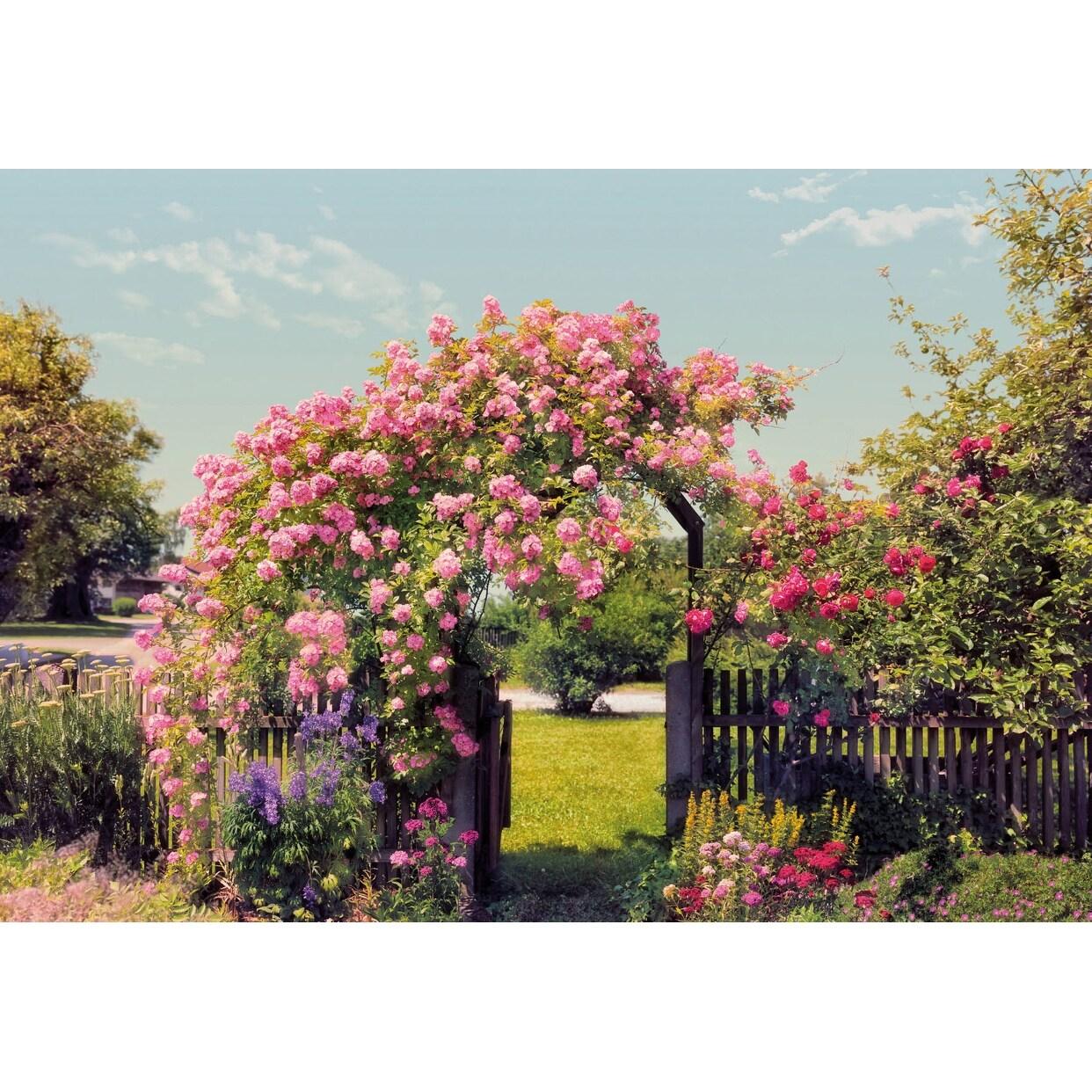 Brewster 8 936 Rose Garden Wall Mural Rose Garden