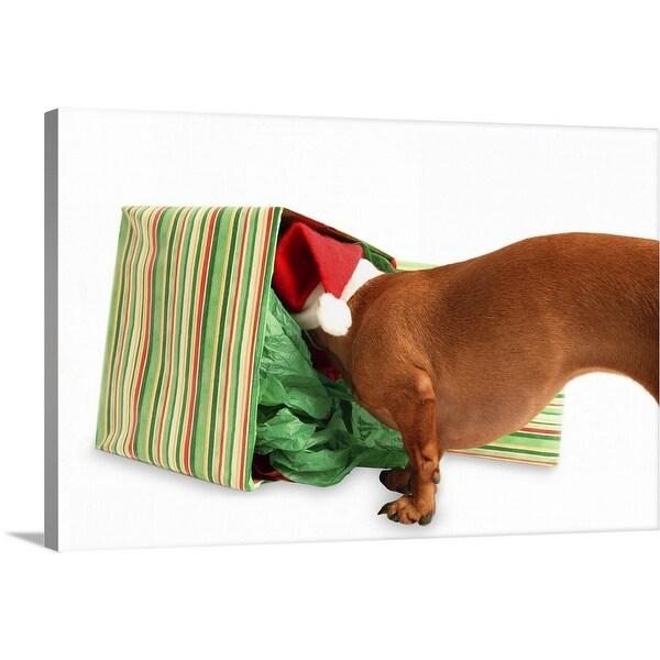 """Dashshund wearing a Santa hat sniffing inside a present"" Canvas Wall Art"