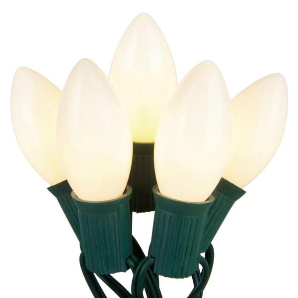 Wintergreen Lighting 67247 25 C9 7W Holiday Bulbs on Green Wire