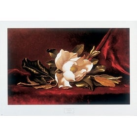 ''The Magnolia Flower'' by Martin Johnson Heade Museum Art Print (25.25 x 36 in.)
