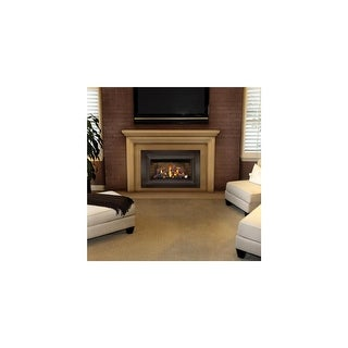 Napoleon GDIZC-SB 24000 BTU Insert Direct Vent Natural Gas Fireplace with Safety Barrier and Millivolt Ignition from the