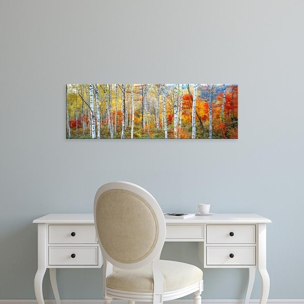 Easy Art Prints Panoramic Images's 'Fall Trees, Shinhodaka, Gifu, Japan' Premium Canvas Art