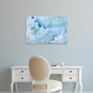Easy Art Prints Rob Tilley's 'Agave I' Premium Canvas Art