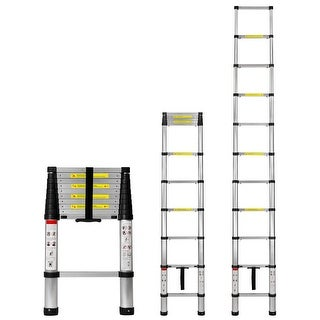 Work-It! Extension Ladder 10.5 Ft with Soft Close Spring Function