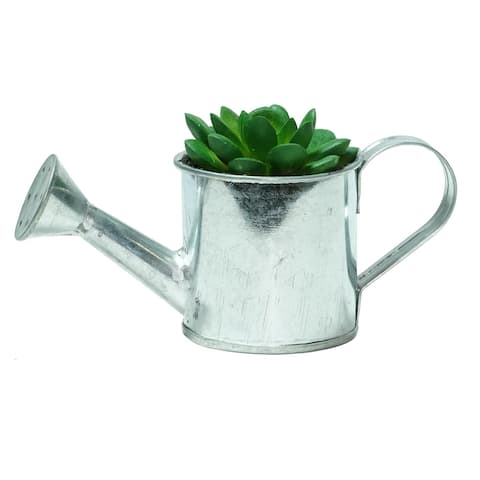 """6"""" Silver and Green Tropical Forest Mini Artificial Rose Succulent with Water Can"""