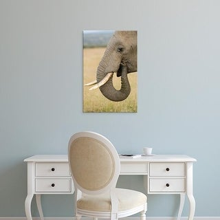 Easy Art Prints Daniel Schreiber's 'Elephant Eating' Premium Canvas Art